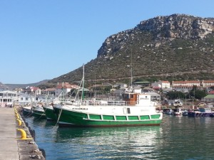 Fishing trawlers in Kalk Bay Harbour